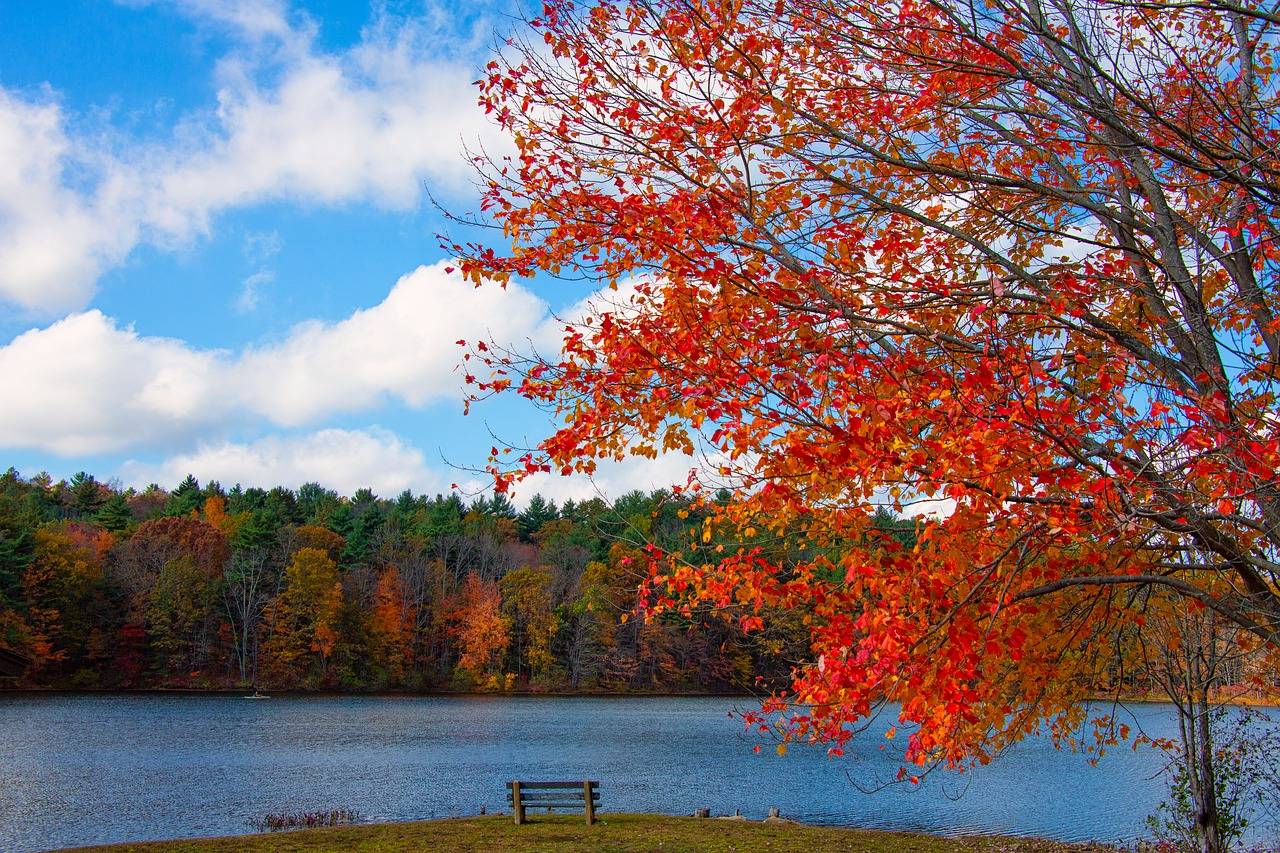 autunno New England